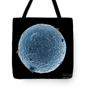 Human Egg Cell And Sperm Cells Esem Tote Bag