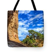 Human Insignificance Tote Bag