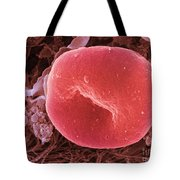 Human Red Blood Cell, Sem Tote Bag