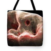 Human Tooth, Sem Tote Bag