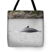 Humpback Whale 5 Tote Bag