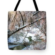 Humber River Winter 3 Tote Bag