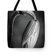Humble Monochrome Tote Bag