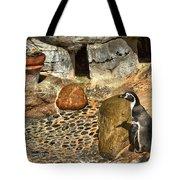 Humboldt Penguin 4 Tote Bag