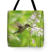 Hummer And Obedient Plant Tote Bag