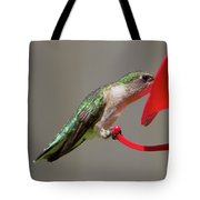 Humming Bird 10 Tote Bag