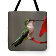 Humming Bird 8 Tote Bag