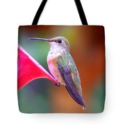 Hummingbird - 18 Tote Bag