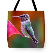 Hummingbird - 28 Tote Bag