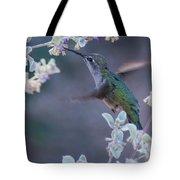 Hummingbird 0091 Tote Bag