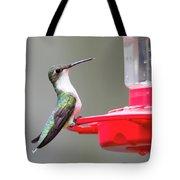 Hummingbird 33 Tote Bag