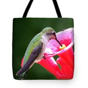 Hummingbird 33 Tote Bag