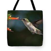 Hummingbird #4 Tote Bag