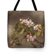 Hummingbird And Apple Blossoms Tote Bag