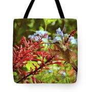 Hummingbird And Firespike Tote Bag