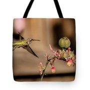 Hummingbird And Red Yucca Tote Bag
