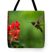 Hummingbird And Scarlet Sage Tote Bag