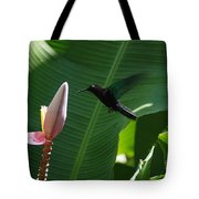 Hummingbird At Banana Flower Tote Bag