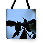 Hummingbird At Sunrise Silhouette Tote Bag