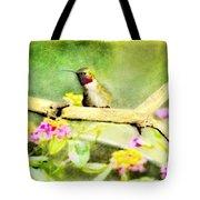 Hummingbird Attitude - Digital Paint 1 Tote Bag