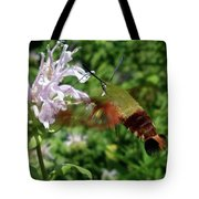 Hummingbird Clear-wing Moth At Monarda Tote Bag