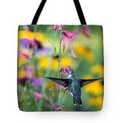 Hummingbird Dance Tote Bag by Dana Moyer