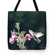 Hummingbird Drinking Pink Hollyhock Photography Tote Bag