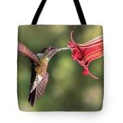 Hummingbird Enjoying Beautiful Flower Tote Bag