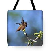 Hummingbird Feeling Frisky 1 Tote Bag