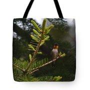 Hummingbird Flashing Tote Bag