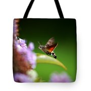 Hummingbird Hawk Moth - Four Tote Bag