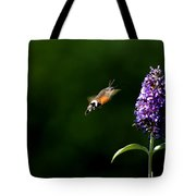 Hummingbird Hawk Moth - Three Tote Bag