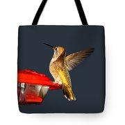 Hummingbird In My Window Tote Bag