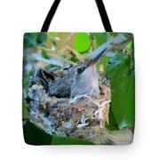 Hummingbird In Nest 1 Tote Bag