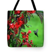Hummingbird In The Flowering Quince - Digital Painting Tote Bag