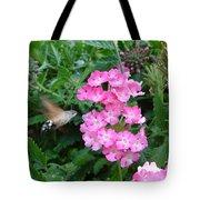 Hummingbird Moth On Pink Verbena Tote Bag