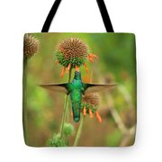 Hummingbird Next To A Wildflower Tote Bag