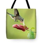 Hummingbird Nose Dive Tote Bag