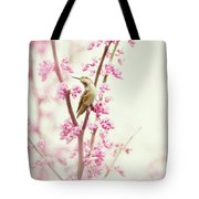 Hummingbird Perched Among Pink Blossoms Tote Bag