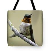 Hummingbird Portrait Square Tote Bag