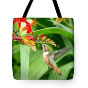 Hummingbird Snacking Tote Bag