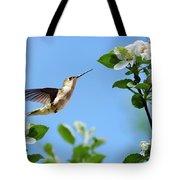 Hummingbird Springtime Tote Bag