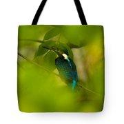 Hummingbird Wants To Hide Tote Bag