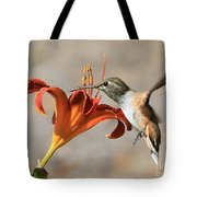 Hummingbird Whisper  Tote Bag