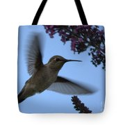 Hummingbird Wings And Butterfly Bush Tote Bag