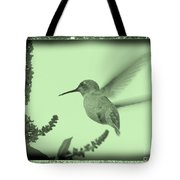 Hummingbird With Old-fashioned Frame 5 Tote Bag