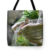 Hummingbirds Do Take Baths Tote Bag