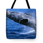 Humpback Full Breach Tote Bag