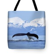 Humpback Whale Megaptera Novaeangliae Tote Bag by Konrad Wothe