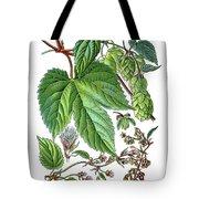 Humulus Lupulus, Common Hop Or Hop Tote Bag